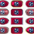 12 buttons of the Flag of Tennessee — Stock Photo