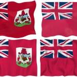 Flag of Bermuda — Stock Photo #1212458