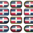 Royalty-Free Stock Photo: Twelve buttons of the Flag of dominican