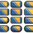 Stock Photo: Twelve buttons of Flag of Bosnia
