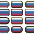 Royalty-Free Stock Photo: 12 buttons of the Flag of the Russain Fe