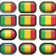 Twelve buttons of the Flag of Mali — Stock Photo