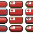 Twelve buttons of Flag of Tonga — Stock Photo #1214487
