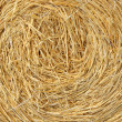 Straw bale background — Stock Photo