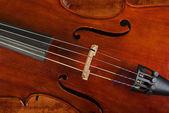 Cello or violin — Stock Photo