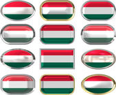12 buttons of the Flag of hungary — Stock Photo