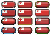 Twelve buttons of the Flag of Tonga — Stock Photo