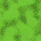Green snake skin — Stock Photo