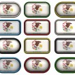 12 buttons of Flag of illinois — Stok Fotoğraf #1244274