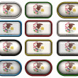 Stock Photo: 12 buttons of Flag of illinois