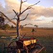 Stock Photo: Old plough on farm at sunset