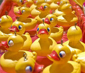 Lots of rubber ducks — Stock Photo