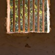 Prison bars — Stock Photo #1430857