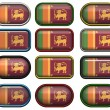 12 buttons of the Flag of Sri Lanka — Foto de Stock