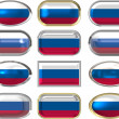 Stock Photo: 12 buttons of Flag of Russain Federation
