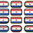 Twelve buttons of the Flag of Paraguay — Stock Photo