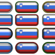 Twelve buttons of the Flag of Slovenia — Foto de Stock