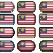 12 buttons of the Flag of Malaysia — Stock Photo