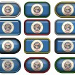 Stock Photo: 12 buttons of Flag of Minnesota