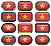 Twelve buttons of the Flag of Vietnam — Foto Stock