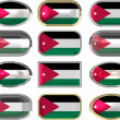 12 buttons of the Flag of Jordan — Stock Photo
