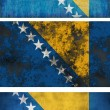 Stock Photo: Flag of Bosnia