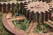 Old cogs — Stock Photo