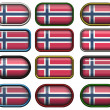 12 buttons of the Flag of Norway - Stock Photo