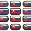 12 buttons of the Flag of Slovakia - Stock Photo