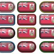 Twelve buttons of the Flag of Bermuda — Stock Photo