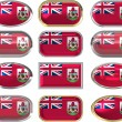 Twelve buttons of the Flag of Bermuda — Stock Photo #2037547