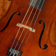 Cello or violin — Stock Photo