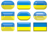 Knoppen van de vlag van Oekraïne — Stockfoto