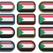 12 buttons of the Flag of Sudan — Stock Photo