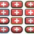 12 buttons of the Flag of Switzerland — Stock Photo