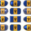 Twelve buttons of the Flag of Barbados — Stock Photo #2063830