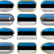 Twelve buttons of the Flag of Estonia — Stock Photo #2063902