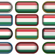 Twelve buttons of the Flag of Hungary — Stock Photo