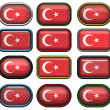 Twelve buttons of the Flag of Turkey — Stock Photo