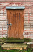 The door — Foto de Stock