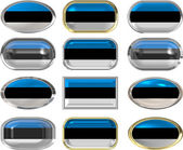 Twelve buttons of the Flag of Estonia — Stock Photo