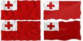 Flag of Tonga — Stock Photo