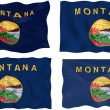 Flag of Montana — Stock Photo