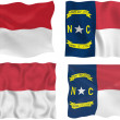 Flag of North Carolina — Stock Photo #2355296