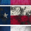 Flag of Texas — Stock Photo