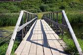 The bridge through the river — Stock Photo