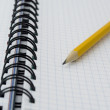 Stock Photo: Pencil on opened notebook.