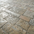 Paving blocks — Stock Photo #1060444