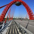 Picturesque bridge, Moscow, Russia — Stock Photo