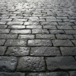 Paving blocks after rain — Stock Photo